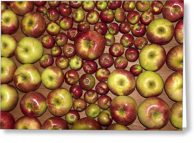 Maine Agriculture Greeting Cards - Apples Greeting Card by Jim Walker