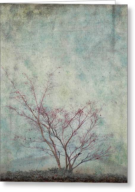 Seasonal Digital Art Greeting Cards - Approaching Spring Greeting Card by Carol Leigh