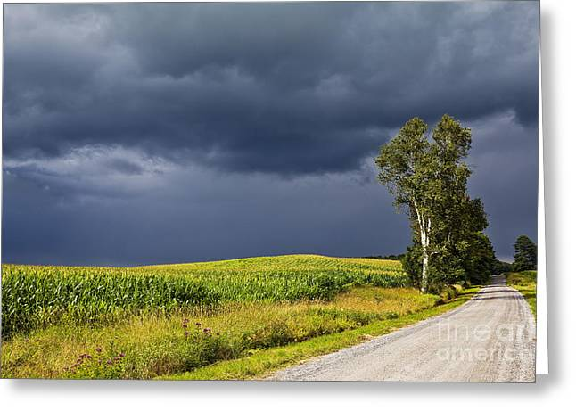 Summer Storm Greeting Cards - Approaching Storm Greeting Card by Alan L Graham