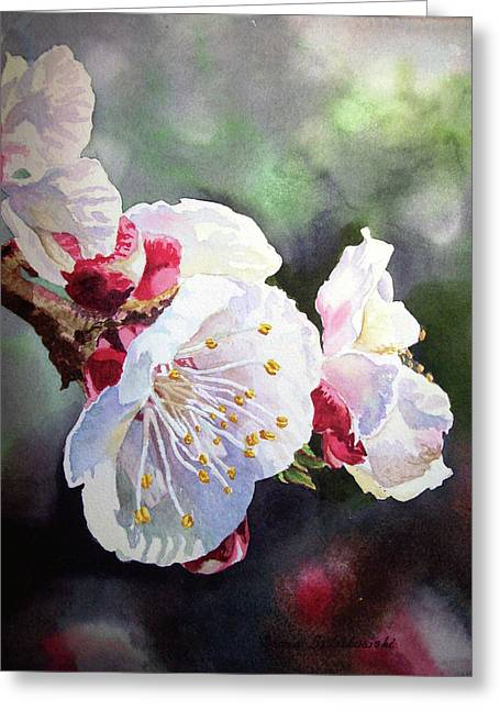 Apricots Paintings Greeting Cards - Apricot Flowers Greeting Card by Irina Sztukowski