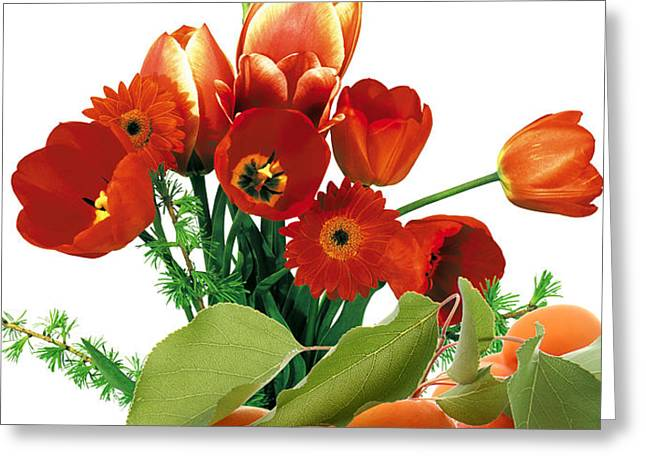 Apricots and Red Roses Greeting Card by Munir Alawi
