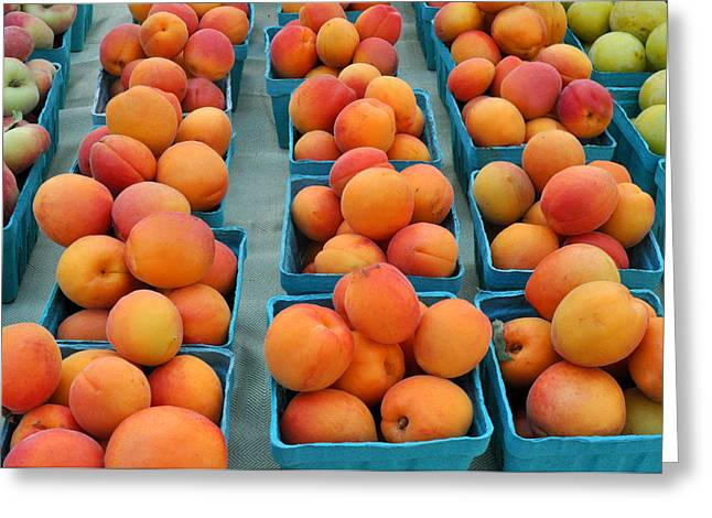 Local Food Greeting Cards - Apricots at Union Square Farmers Market Greeting Card by Diane Lent