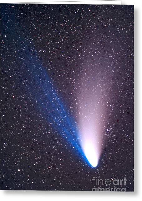 Comet Hale-bopp Photography Greeting Cards - April 7, 1997 - Come Hale-bopp Greeting Card by Alan Dyer