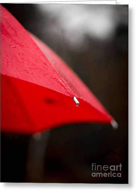 Color Colorful Greeting Cards - April Showers Bring May Flowers Greeting Card by Edward Fielding