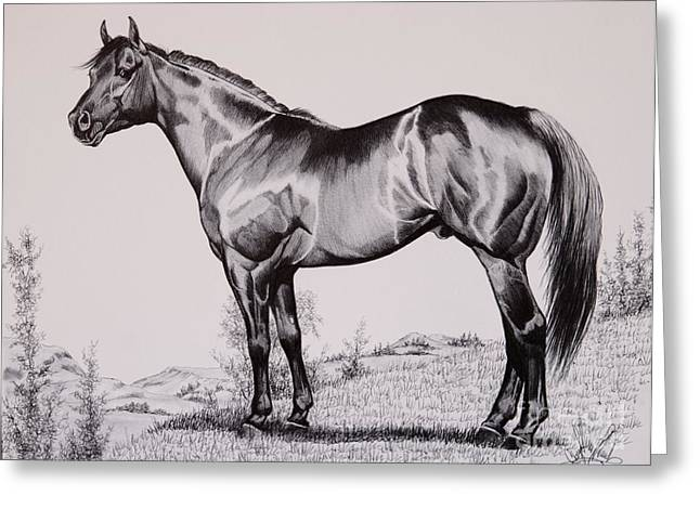 Quarter Horses Drawings Greeting Cards - AQHA Stallion Driftwood Greeting Card by Cheryl Poland