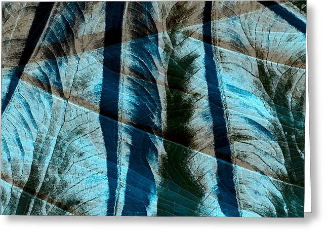 Nature Study Digital Greeting Cards - Aqua and Brown Leaf Montage Greeting Card by Bonnie Bruno