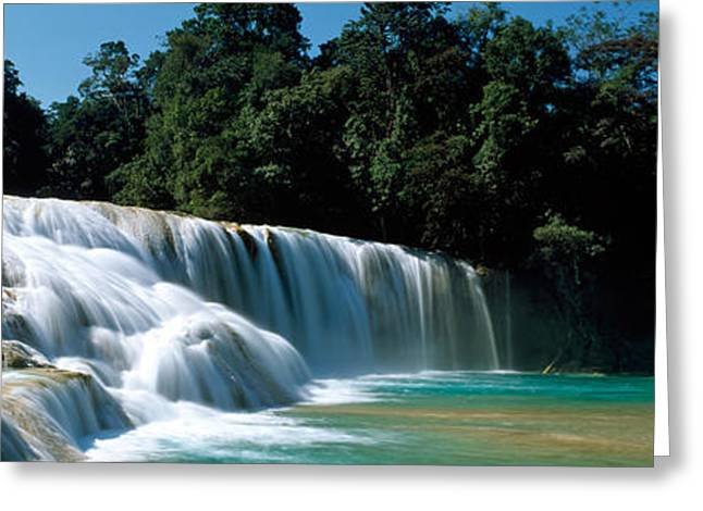 Plunge Greeting Cards - Aqua Azul Chiapas Mexico Greeting Card by Panoramic Images