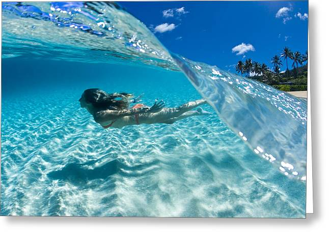 Dreamy Photographs Greeting Cards - Aqua Dive Greeting Card by Sean Davey