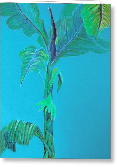 Aqua Drawings Greeting Cards - Aqua Palm Greeting Card by Mindy Newman