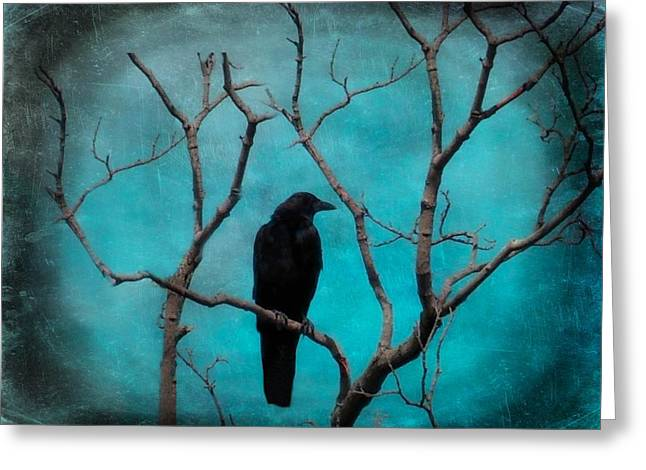 Passerine Greeting Cards - Aqua Twilight Greeting Card by Gothicolors Donna Snyder