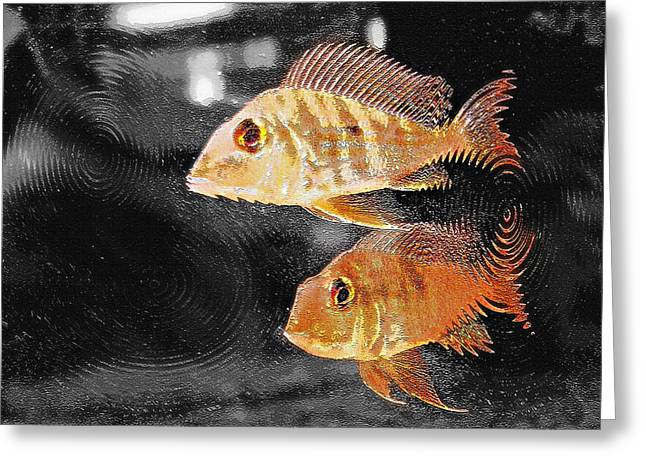Artistic Fish Abstraction Greeting Cards - Aquarium Art 26 Greeting Card by Steve Ohlsen