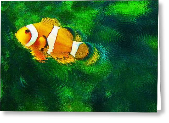 Artistic Fish Abstraction Greeting Cards - Aquarium Art 27 - Solo Clown - Feeding Time Greeting Card by Steve Ohlsen