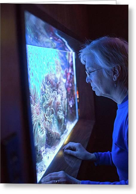 Aquarium Of Niagara Greeting Card by Jim West