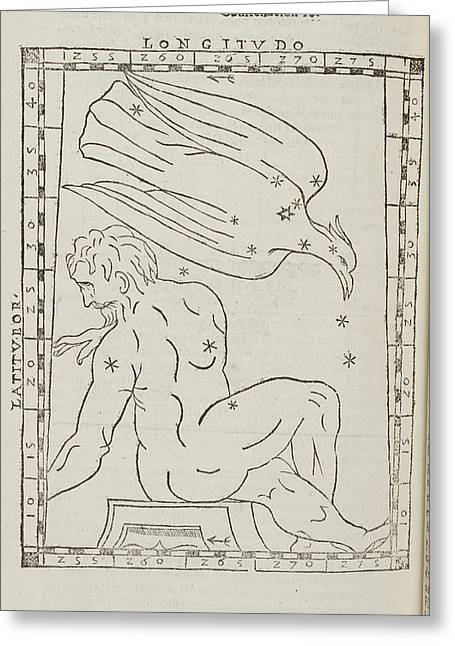 Aquila Star Constellation Greeting Card by British Library