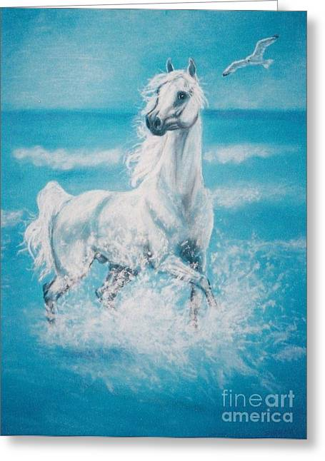 Equestrian Prints Pastels Greeting Cards - Arabian horse and seagull Greeting Card by Dorota Zdunska