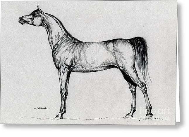 Arabian Horse Drawing 34 Greeting Card by Angel  Tarantella