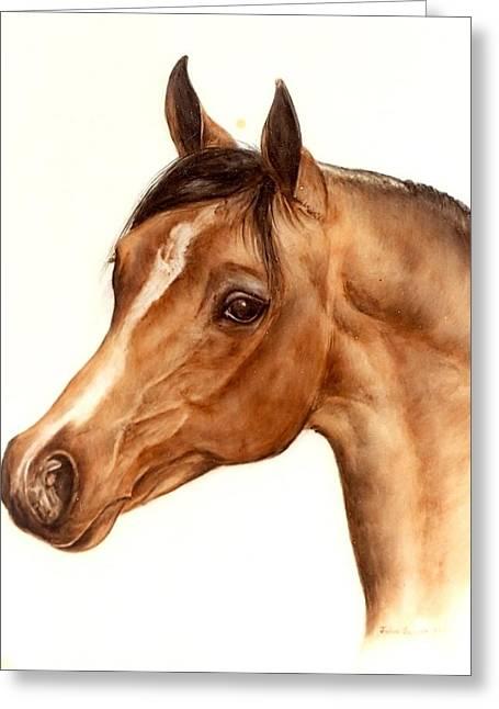 Head Glass Greeting Cards - Arabian Horse Head Study Greeting Card by Julia Sweda