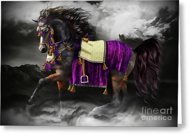 Horses In Print Greeting Cards - Arabian Horse  Shaitan Greeting Card by Shanina Conway