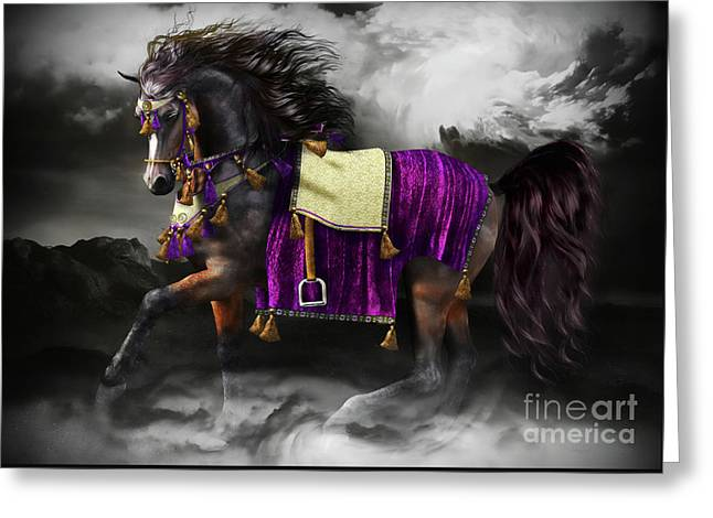 Horses Art Print Greeting Cards - Arabian Horse  Shaitan Greeting Card by Shanina Conway