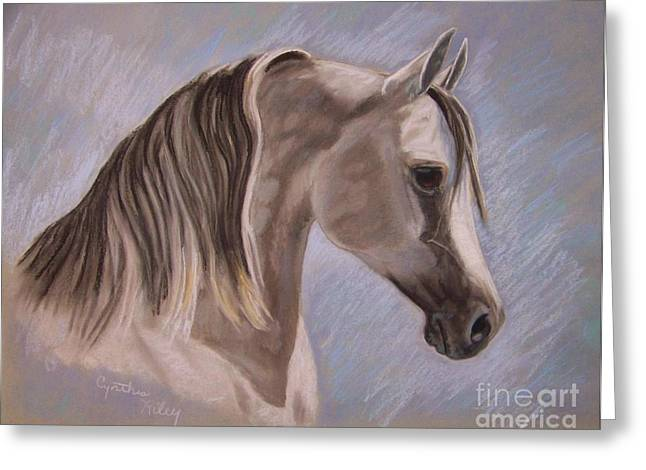 Equine Pastels Pastels Greeting Cards - Arabian In Pastel Greeting Card by Cynthia Riley