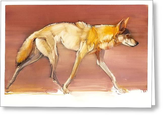 Brown Tones Greeting Cards - Arabian Wolf Greeting Card by Mark Adlington