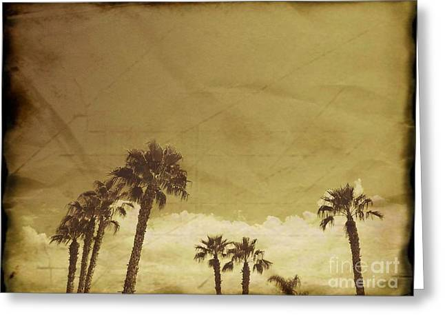 Old Tress Greeting Cards - Arabica Sahara Palms Greeting Card by Nasser Studios