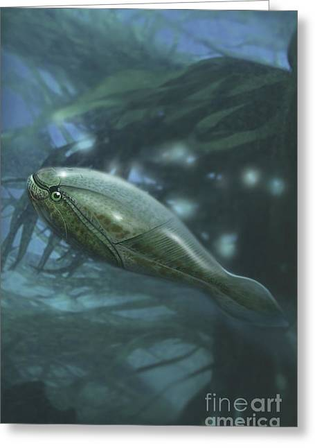 Fish Digital Art Greeting Cards - Arandaspis Was A Jawless Fish Greeting Card by Jan Sovak