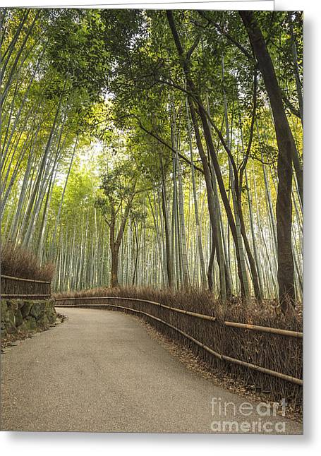Recently Sold -  - Bamboo Fence Greeting Cards - Arashiyama Kyoto Japan Greeting Card by Colin and Linda McKie