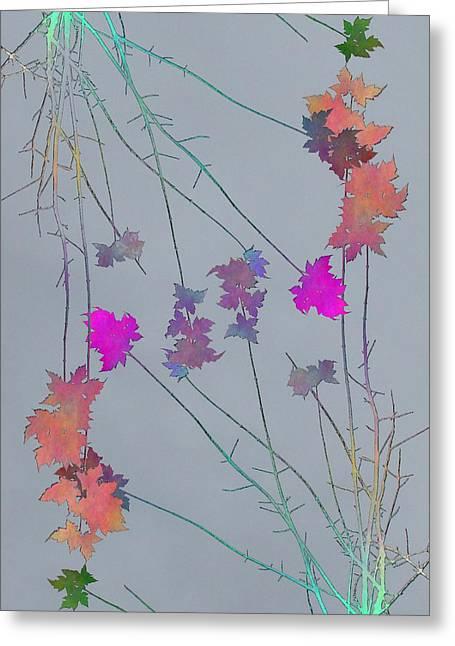 Arbor Autumn Harmony 1 Greeting Card by Tim Allen