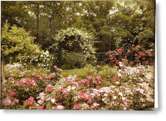 Trellis Digital Greeting Cards - Arbor Entrance Greeting Card by Jessica Jenney