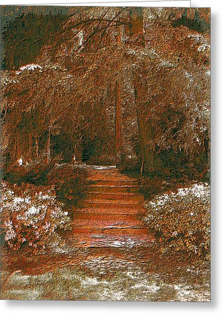 Jagged Border Greeting Cards - Arbor Steps Greeting Card by Tim Allen
