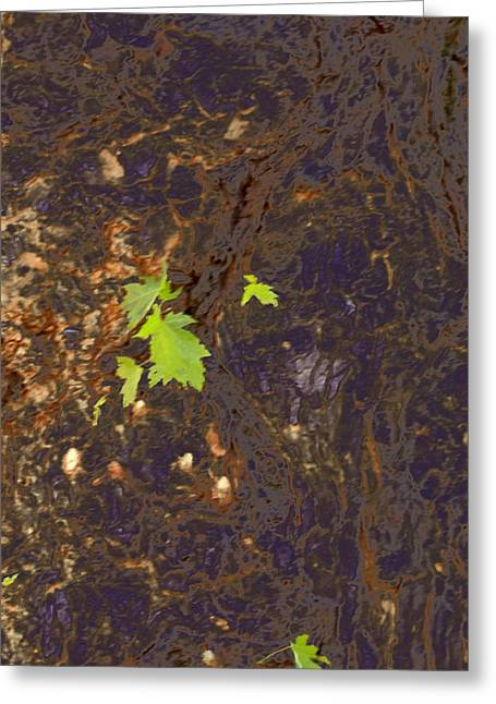 Morphed Photographs Greeting Cards - Arboreal Chord 2014 Greeting Card by James Warren