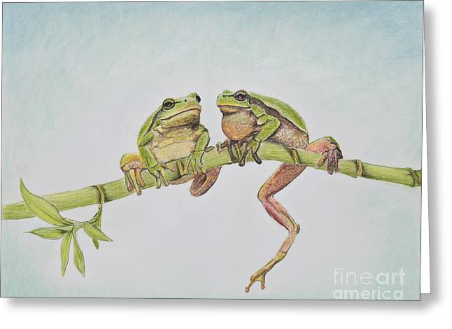 Amphibians Pastels Greeting Cards - Arboreal Frogs in Pastel Greeting Card by Kate Sumners