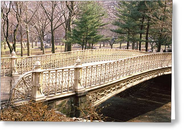 Arched Bridge Greeting Cards - Arch Bridge In A Park, Central Park Greeting Card by Panoramic Images