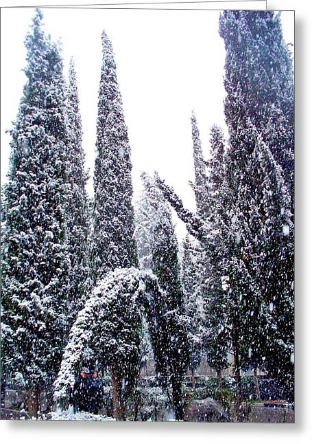 Snowstorm Prints Greeting Cards - Arch of Snow  Greeting Card by Rick Todaro
