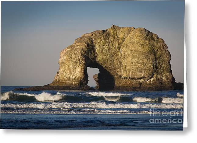 Monolith Greeting Cards - Arch Rock - Oregon Coast Greeting Card by Brian Jannsen