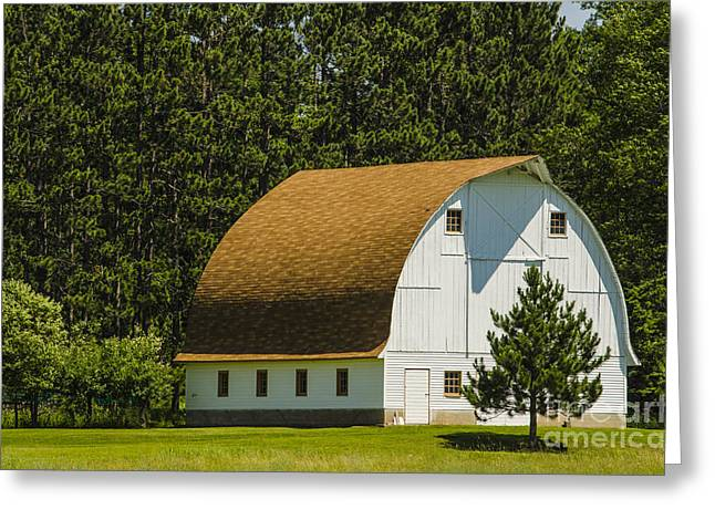 Dickenson Greeting Cards - Arch Roof Barn and Pine Tree Channing Michigan Greeting Card by Deborah Smolinske