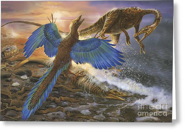 Archaeopteryx Defending Its Prey Greeting Card by Jan Sovak