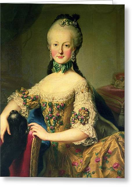Lap Dogs Greeting Cards - Archduchess Maria Elisabeth Habsburg-lothringen 1743-1808, Sixth Child Of Empress Maria Theresa Greeting Card by Martin II Mytens or Meytens