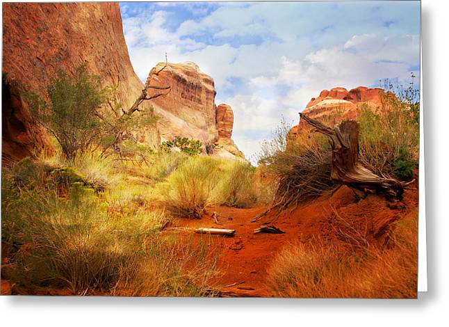 Marty Koch Greeting Cards - Arches 25 Greeting Card by Marty Koch