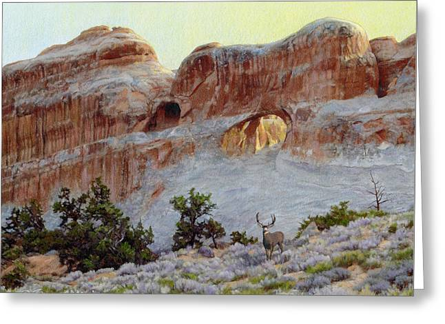 Arches Mulie Greeting Card by Bruce Morrison