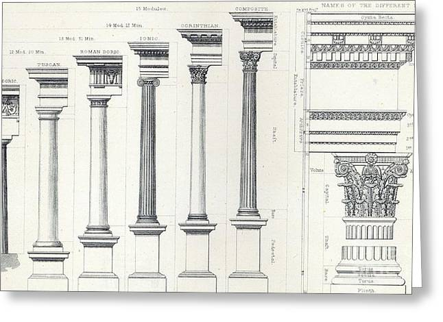 Rectum Greeting Cards - Architecture I Orders of Architecture engraved by Charles Lawrie Greeting Card by  John Burley Waring