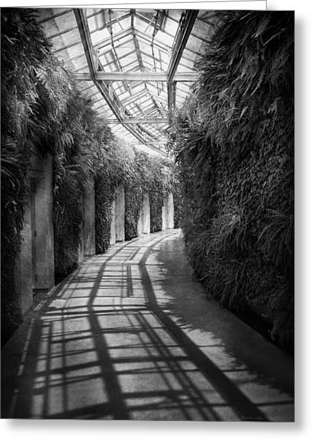 Sunlit Door Greeting Cards - Architecture - The unchosen path - BW Greeting Card by Mike Savad