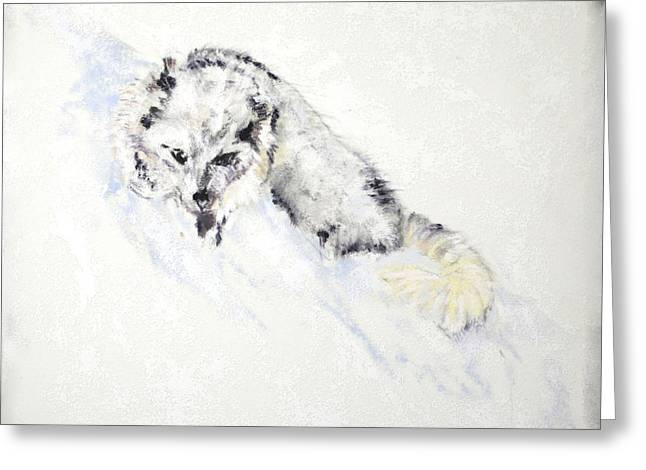 Fox Kit Paintings Greeting Cards - Arctic Fox Kit Greeting Card by Sandy Brooks