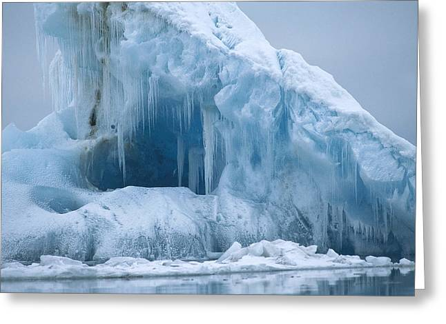 Svalbard Greeting Cards - Arctic Landscape Svalbard Norway Greeting Card by Flip Nicklin