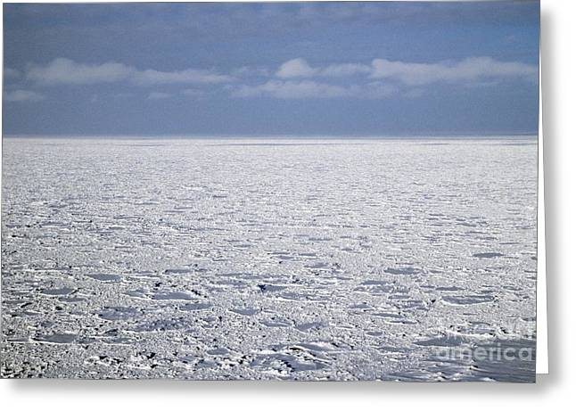 Snow-covered Landscape Photographs Greeting Cards - Arctic Ocean, Russia Greeting Card by Ria Novosti