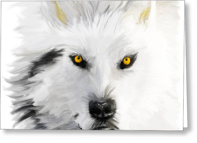 Arctic Wolf With Yellow Eyes Greeting Card by Angela A Stanton