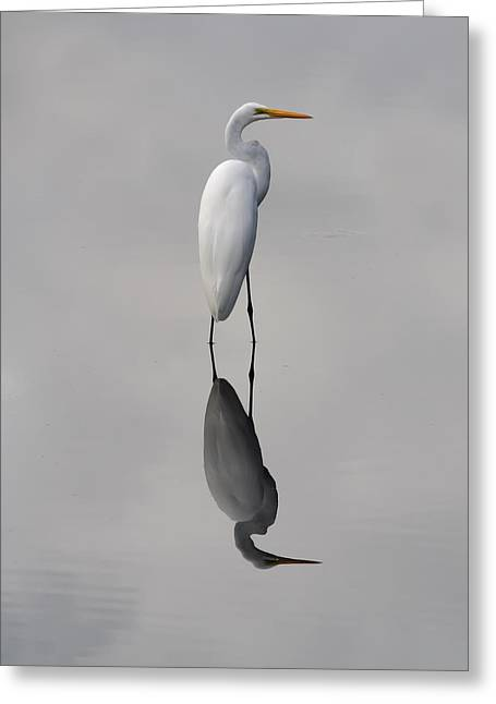 Argent Greeting Cards - Argent Mirror Greeting Card by Paul Rebmann