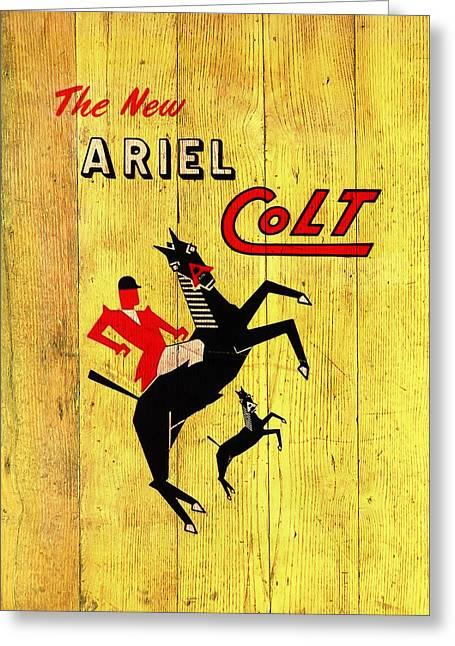 Ariel Colt Greeting Card by Mark Rogan