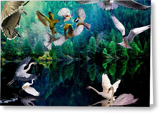 Seabirds Mixed Media Greeting Cards - Ariel Squawkble Greeting Card by Michael Pittas
